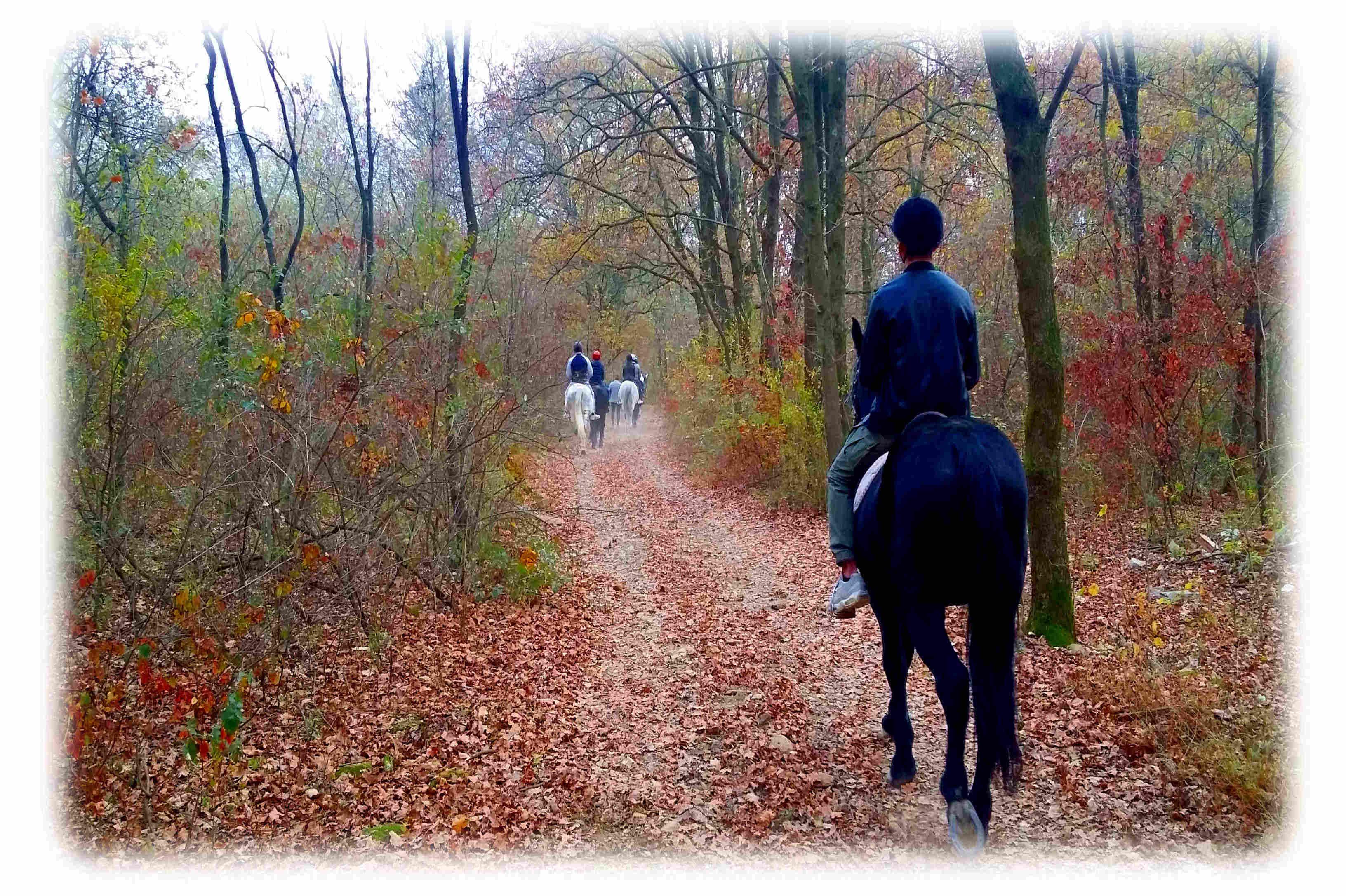 Passeggiate & Trekking